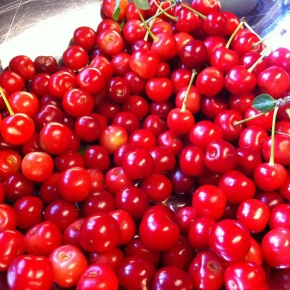 Worms in the Cherries…